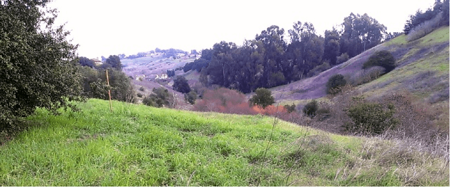 Blue rock springs creek for Landscaping rocks vallejo ca
