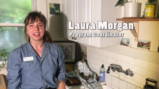 Explore a Homemade Watershed with Laura