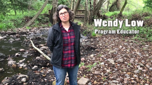 Explore a Watershed Model with Wendy