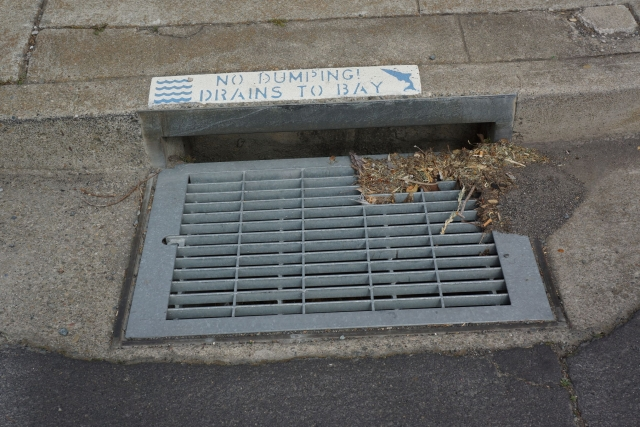 storm drain with label