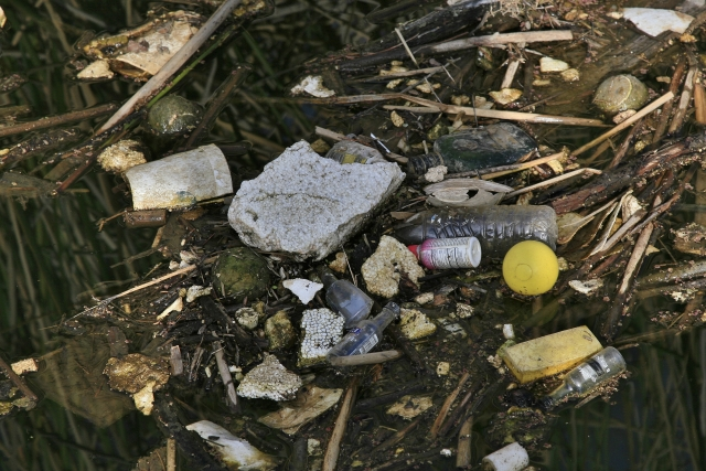 A picture of trash in a creek. The trash includes styrofoam, plastic bottles, cans, and other plastic products.