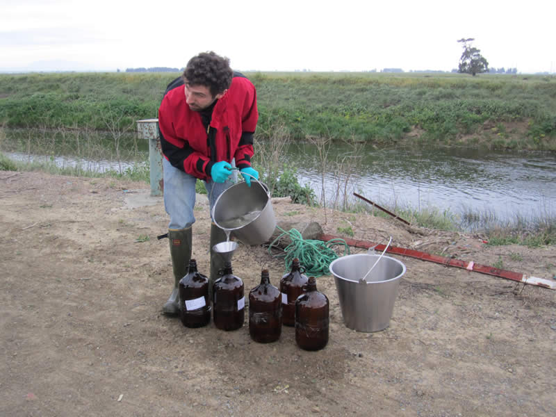 Water Quality Samples Ulatis Sub Watershed - Irrigated Lands