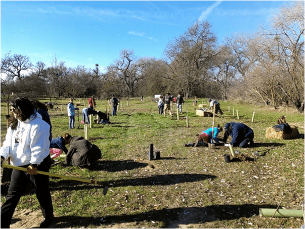 Volunteers helping to restore the Riparian Forest on Sweeney Creek near Allendale